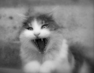 Jak sobie radzić ze złością